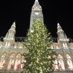 Christmas Vienna Market